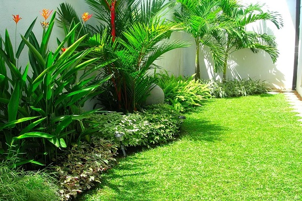 House of green before and after fuard 1 32 garden for Home landscape design sri lanka