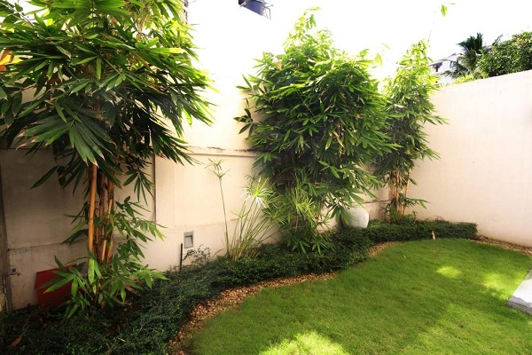 House of green before and after feroz 1 15 garden for Home landscape design sri lanka