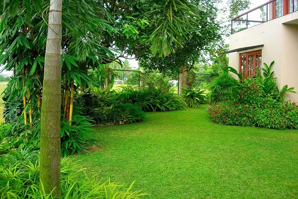 House garden designs in sri lanka house design for Indian home garden design