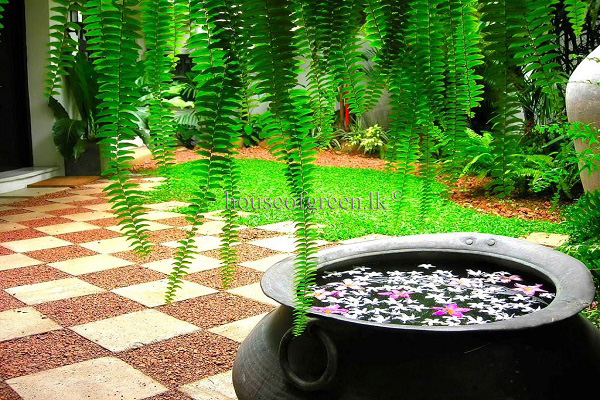 House of green kadalla 27052012 01 garden for Home landscape design sri lanka